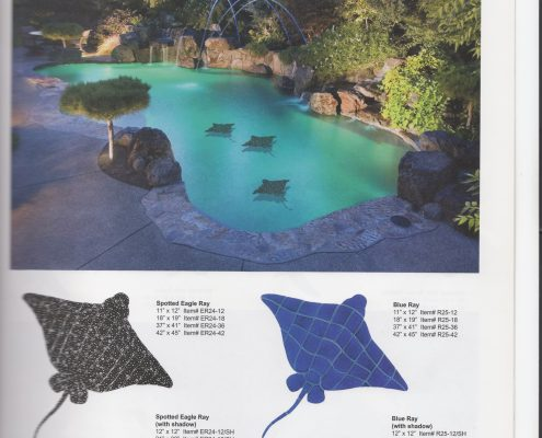 Pool_accents (3)